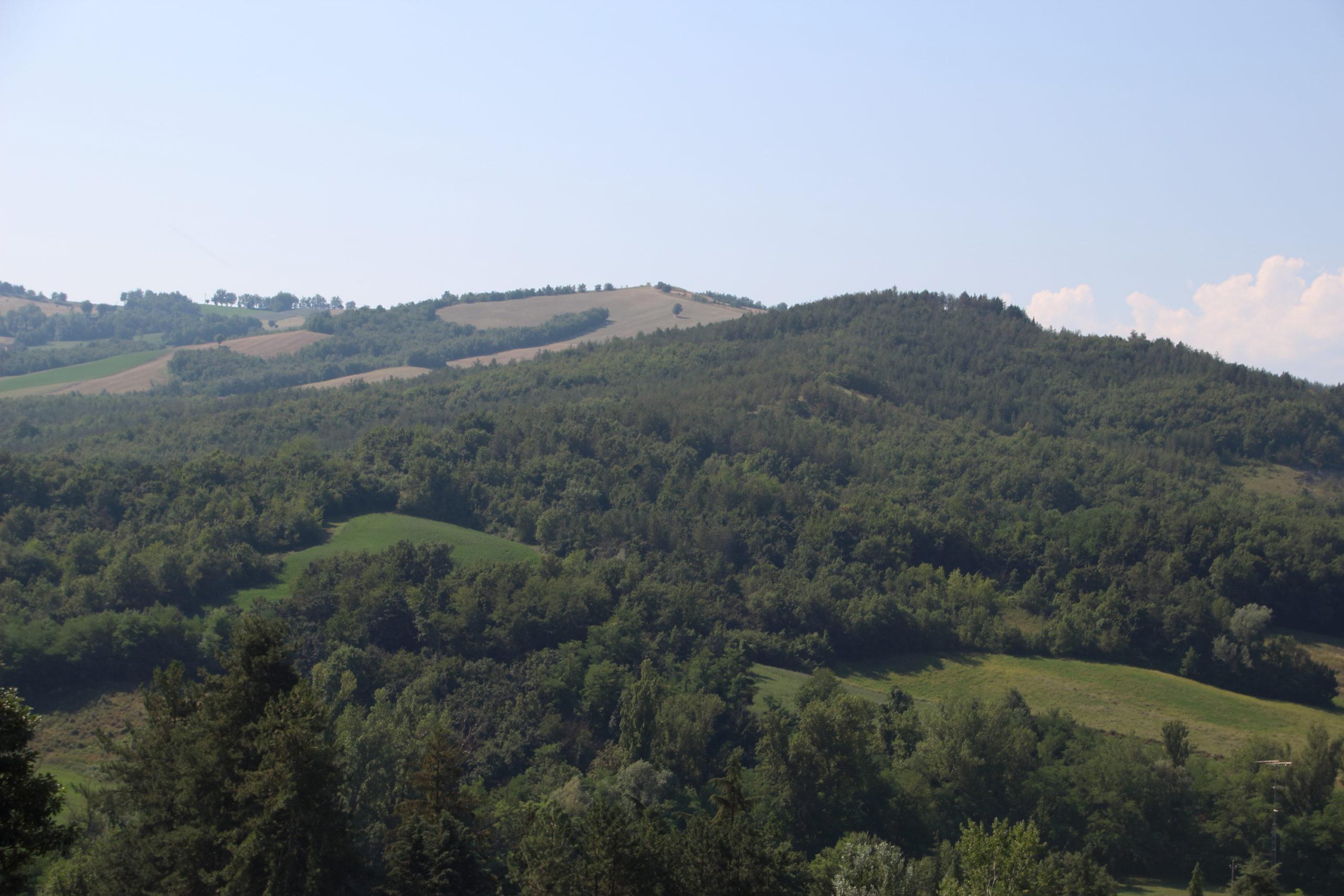 Parma e Dintorni